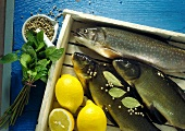 Fresh fish, lemons, white peppercorns, bay leaf, mint