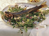 Brook trout cooked in foil on meadow herbs