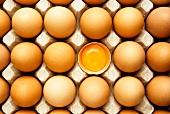 Brown eggs in egg box, one egg broken open