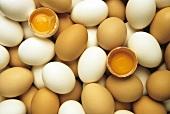 Viele braune & weisse Eier, darunter zwei aufgeschlagene