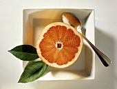 Half of a Pink Grapefruit with a Spoon in a Square Plate