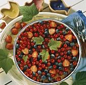 Beerenkuchen mit Johannisbeeren, Heidelbeeren & Erdbeeren