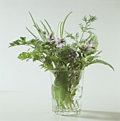 Different Types of Herbs in a Glass Vase
