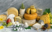 Several Types of Cheeses
