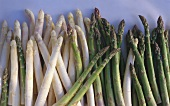 White and green asparagus spears