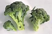 Broccoli on light background