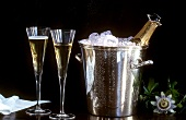 Two Glasses of Champagne with Ice Filled Wine Cooler and Bottle