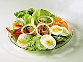 Mixed salad plate with tuna, eggs and onion rings
