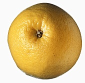 One Whole Grapefruit