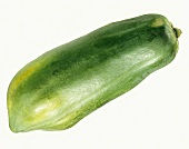 A Single Green Papaya