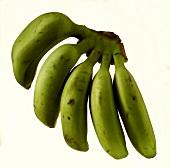 A Bunch of Green Bananas