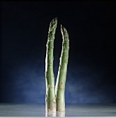 Two green asparagus spears