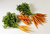 Young carrots, two bunches with leaves, & single carrots without
