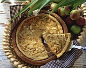 Apple and onion quiche with bacon in baking dish