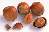 Hazelnuts in and out of Shell