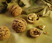 Whole walnuts and halved walnut with kernel