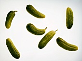 Several individual small pickled gherkins (cornichons)