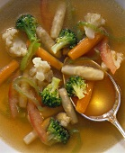 Vegetables (detail) in clear broth with spoon