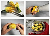 Preparing stuffed courgette flowers