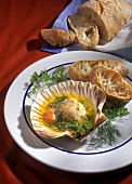 Pilgrim scallops with herb butter in shells, with white bread