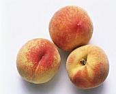 Drei einzelne Pfirsiche