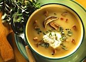 Potato soup with yellow boletus, swirls of cream & marjoram