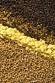 White & brown mustard grains (whole & crushed) mustard powder