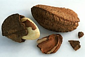 Two Brazil nuts, one half in its shell