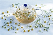 Camomile tea in glass pot and camomile flowers