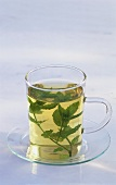 Peppermint tea in glass cup with fresh peppermint