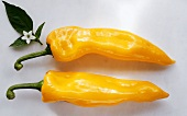 Two longish yellow peppers and green leaf with flower
