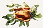 Whole roast chicken on fresh sage leaves
