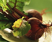 Beetroot, two roots with stalk and leaves on plate