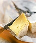Camembert Wedge