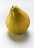 A whole pomelo on white background