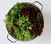 Mixed salad leaves in a strainer