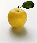 Eine gelbe Pflaume mit Stiel und Blatt