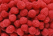 Raspberries, filling the picture