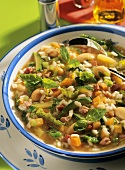 Minestrone alla lucchese (vegetable soup with beans & bacon)