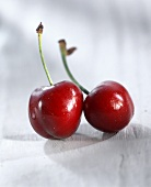 Two shiny red cherries with stalks