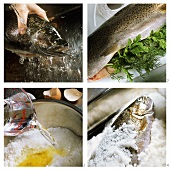 Preparing salmon trout in salt coating