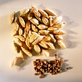 Cardamom capsules and seeds on light background