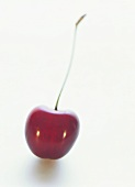A cherry on white background