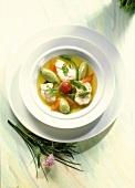 Clear stew of North Sea fish with semolina dumplings