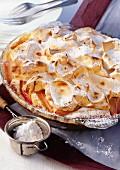 Rhubarb pie with icing sugar in a pie dish