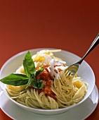 Spaghetti al pomodoro (Spaghetti with tomato sauce & basil)