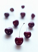 Individual cherries on a white background