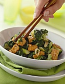 Fried Tofu with Broccoli; Hands Picking up Tofu with Chopsticks