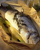 Steamed whole sea perch in greaseproof paper
