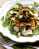 Watercress salad with courgettes, mushrooms, radishes & bread